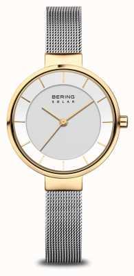 Bering 女士太阳能手表金/银 14631-024
